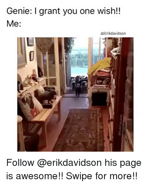 Memes, 🤖, and Page: Genie: I grant you one wish!  Me:  (a Erik davidson Follow @erikdavidson his page is awesome!! Swipe for more!!