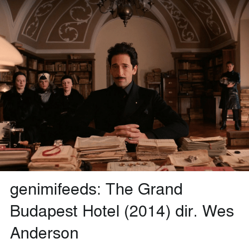 Tumblr, Blog, and Hotel: genimifeeds: The Grand Budapest Hotel (2014) dir. Wes Anderson