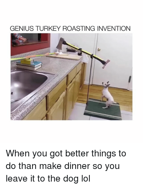 Lol, Genius, and Turkey: GENIUS TURKEY ROASTING INVENTION When you got better things to do than make dinner so you leave it to the dog lol