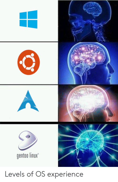 Gentoo Linux Levels of OS Experience | Experience Meme on ME ME