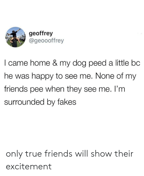 Friends, True, and Happy: geoffrey  @geoooffrey  I came home & my dog peed a little bc  he was happy to see me. None of my  friends pee when they see me. I'm  surrounded by fakes only true friends will show their excitement