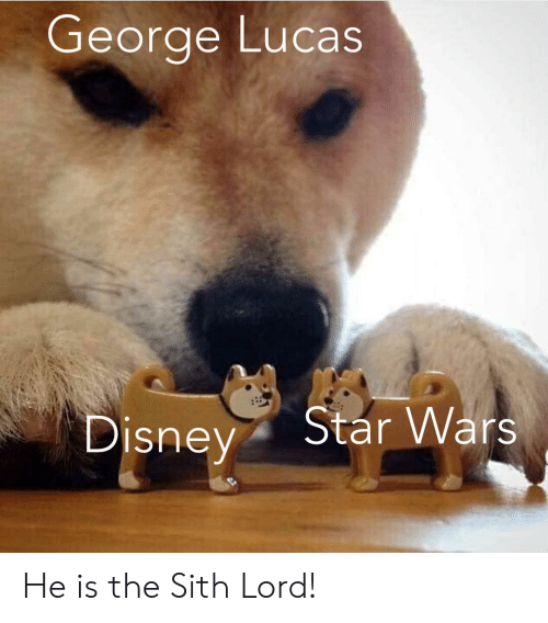Disney, Sith, and Star Wars: George Lucas  Star Wars  Disney He is the Sith Lord!