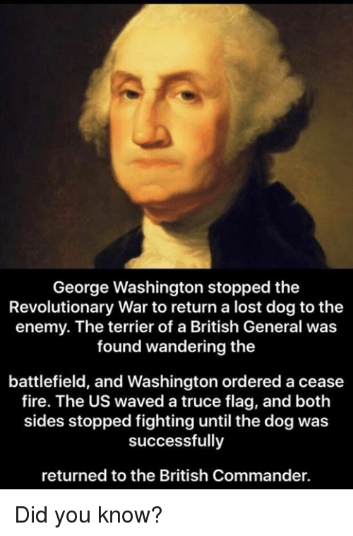 george washington stopped the revolutionary war to return a lost 14908537 25 best george washington memes oftenly memes, america first