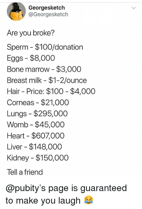 Anaconda, Memes, and Hair: Georgesketch  @Georgesketch  Are you broke?  Sperm $100/donation  Eggs $8,000  Bone marrow $3,000  Breast milk $1-2/ounce  Hair Price: $100 $4,000  Corneas - $21,000  Lungs -$295,000  Womb - $45,000  Heart $607,000  Liver $148,000  Kidney $150,000  Tell a friend @pubity's page is guaranteed to make you laugh 😂