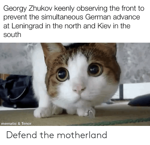 Georgy Zhukov Keenly Observing the Front to Prevent the Simultaneous