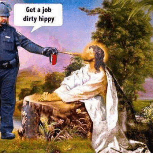 get a job dirty hippy 4607082 25 best dirty hippie memes