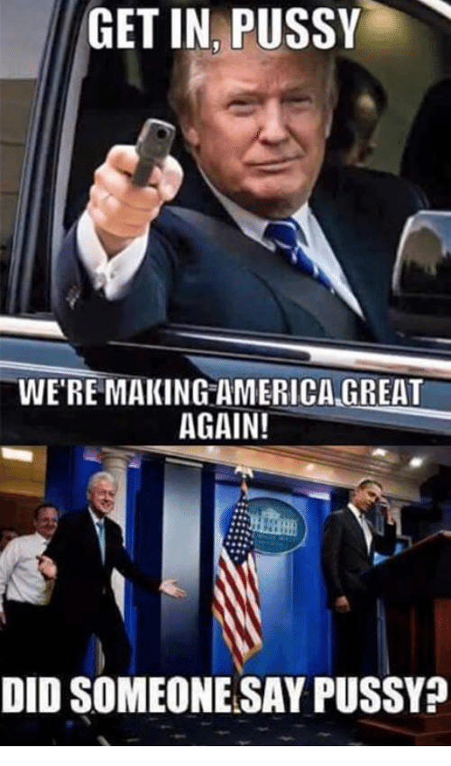 America, Memes, and 🤖: GET IN PUSSY  WE'RE MAKING AMERICA GREAT  AGAIN!  DID SOMEONE SAY PUSSY?