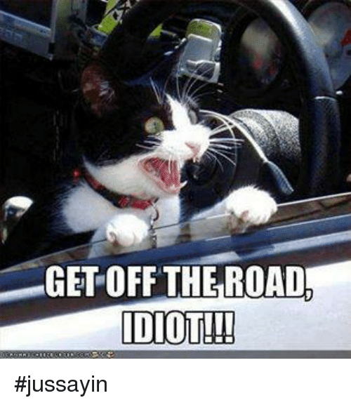 Dank, Idiot, and The Road: GET OFF THE ROAD  IDIOT!! #jussayin