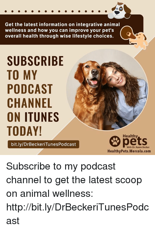 Memes, iTunes, and Animal: Get the latest information on integrative animal  wellness and how you can improve your pet's  overali health through wise lifestyle choices.  SUBSCRIBE  TO MY  PODCAST  CHANNEL  ON ITUNES  TODAY!  pets  Healthy  bit.ly/DrBeckeriTunesPodcast  With Dr. Karen Becker  HealthyPets.Mercola.com Subscribe to my podcast channel to get the latest scoop on animal wellness:  http://bit.ly/DrBeckeriTunesPodcast