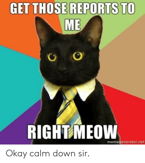 Reddit, Okay, and Net: GET THOSE REPORTS TO  ME  RIGHT MEOW  memegenerator.net Okay calm down sir.