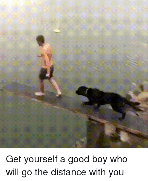 Good, Boy, and Who: Get yourself a good boy who will go the distance with you