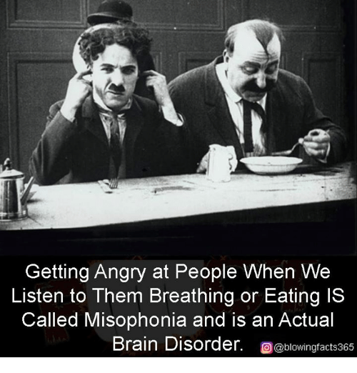 Memes, Brain, and Angry: Getting Angry at People When We  Listen to Them Breathing or Eating IS  Called Misophonia and is an Actual  Brain Disorder. blowingfacts365