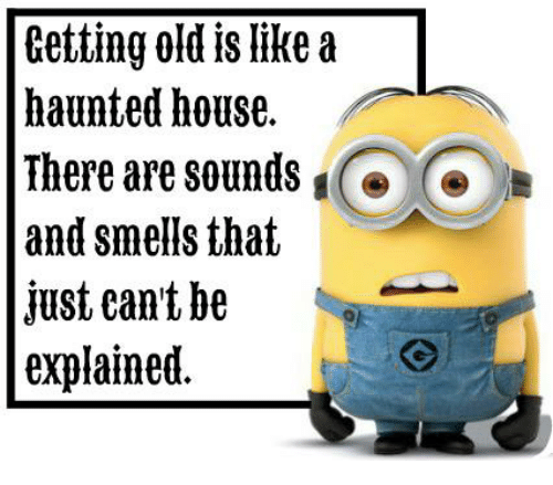 Dank, House, and Old: Getting old like a  haunted house.  There are sounds  and smells that  just eant be  explained.