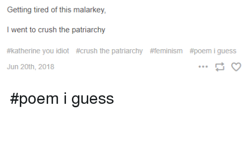 Getting Tired Of This Malarkey I Went To Crush The Patriarchy
