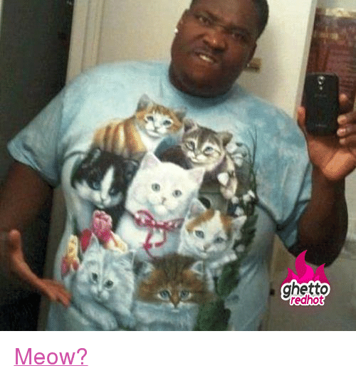 """Funny, Ghetto, and Http: ghetto  redhot <p class=""""tumblrize-linkback""""><a href=""""http://www.ghettoredhot.com/funny-cat-tshirts/"""" title=""""Go to original post at Ghetto Red Hot"""" rel=""""bookmark"""">Meow?</a></p>"""