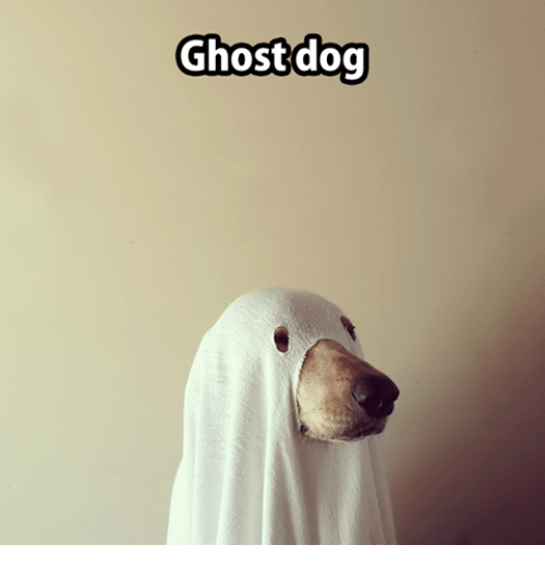 ghost-dog-12217363.png