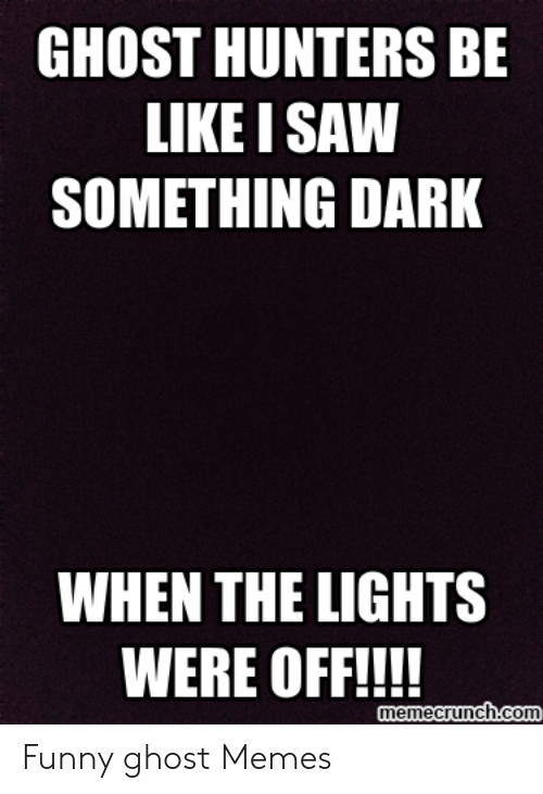 GHOST HUNTERS BE LIKE I SAW SOMETHING DARK WHEN THE LIGHTS WERE OFF