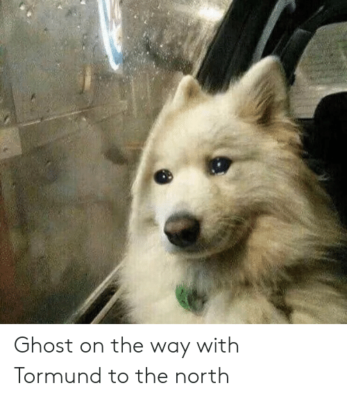 Ghost On The Way With Tormund To The North Ghost Meme On Meme