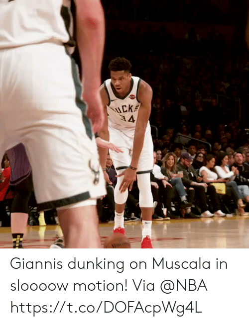 Memes, Nba, and 🤖: Giannis dunking on Muscala in sloooow motion!  Via @NBA  https://t.co/DOFAcpWg4L