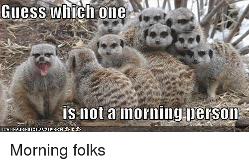 Memes, 🤖, and Folk: Giles Which one  is not a morning person  ICANHASCHEHEZEUR Morning folks