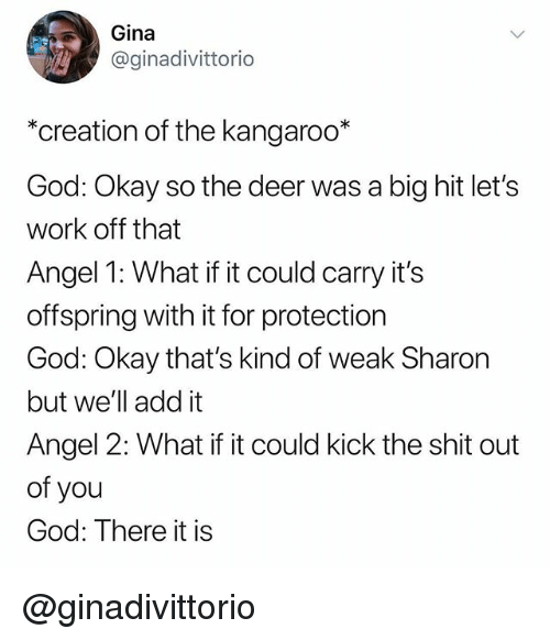 Deer, God, and Shit: Gina  @ginadivittorio  *creation of the kangaroo*  God: Okay so the deer was a big hit let's  work off that  Angel 1: What if it could carry it's  offspring with it for protection  God: Okay that's kind of weak Sharon  but we'll add it  Angel 2: What if it could kick the shit out  of you  God: There it is @ginadivittorio