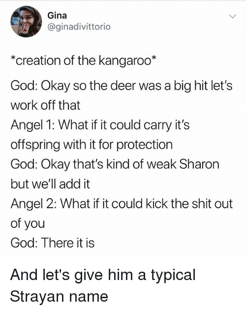 Deer, God, and Memes: Gina  @ginadivittorio  *creation of the kangaroo*  God: Okay so the deer was a big hit let's  work off that  Angel 1: What if it could carry its  offspring with it for protection  God: Okay that's kind of weak Sharon  but we'll add it  Angel 2: What if it could kick the shit out  of you  God: There it is And let's give him a typical Strayan name