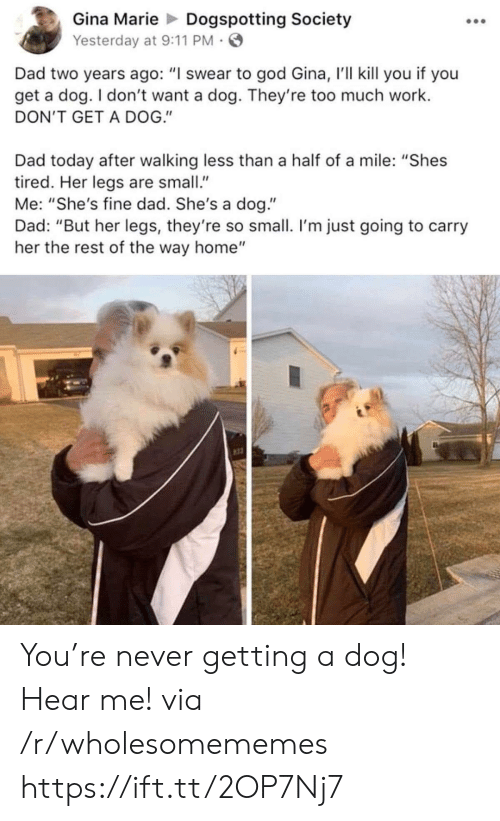 """9/11, Dad, and God: Gina Marie Dogspotting Society  Yesterday at 9:11 PM  Dad two years ago: """"I swear to god Gina, I'll kill you if you  get a dog. I don't want a dog. They're too much work.  DON'T GET A DOG.""""  Dad today after walking less than a half of a mile: """"Shes  tired. Her legs are small.""""  Me: """"She's fine dad. She's a dog.""""  Dad: """"But her legs, they're so small. I'm just going to carry  her the rest of the way home"""" You're never getting a dog! Hear me! via /r/wholesomememes https://ift.tt/2OP7Nj7"""