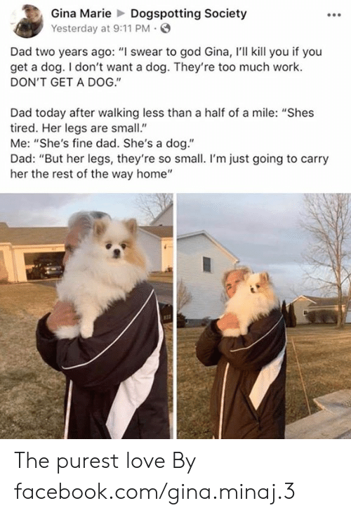 "9/11, Dad, and Dank: Gina MarieDogspotting Society  Yesterday at 9:11 PM  Dad two years ago: ""I swear to god Gina, I'll kill you if you  get a dog. I don't want a dog. They're too much work.  DON'T GET A DOG.""  Dad today after walking less than a half of a mile: ""Shes  tired. Her legs are small""  Me: ""She's fine dad. She's a dog.""  Dad: ""But her legs, they're so small. I'm just going to carry  her the rest of the way home"" The purest love  By facebook.com/gina.minaj.3"