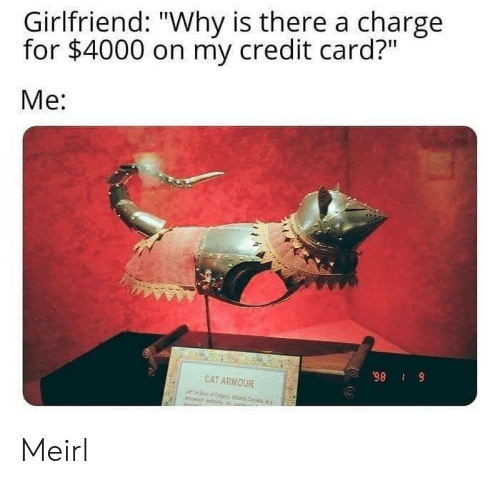"Girlfriend, MeIRL, and Cat: Girlfriend: ""Why is there a charge  for $4000 on my credit card?""  Me:  98 9  CAT ARMOUR Meirl"