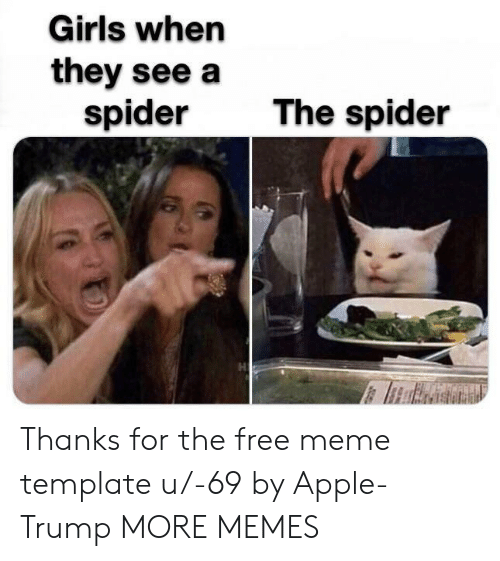 Apple, Dank, and Girls: Girls when  they see a  spider  The spider Thanks for the free meme template u/-69 by Apple-Trump MORE MEMES