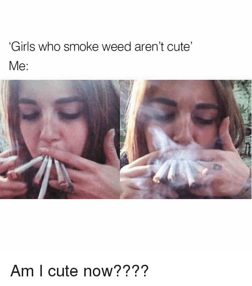 Memes, 🤖, and Weeds: Girls who smoke weed aren't cute'  Me: Am I cute now????