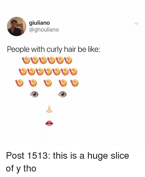 Be Like, Memes, and Hair: giuliano  @ghouliano  People with curly hair be like: Post 1513: this is a huge slice of y tho