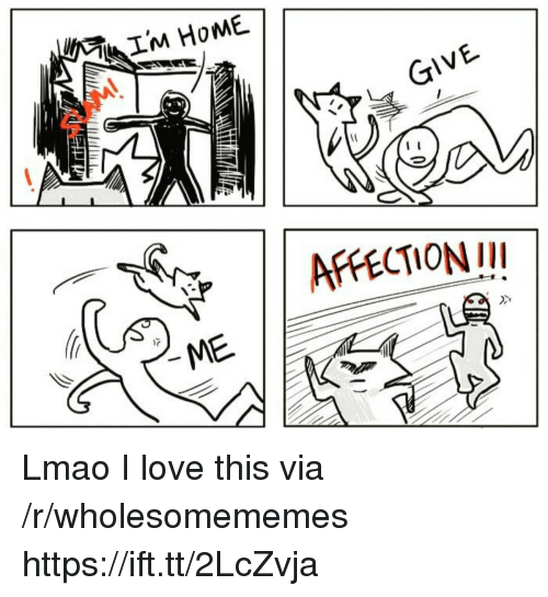 Lmao, Love, and Via: GIVE  AFFECTIONII  Dxe Lmao I love this via /r/wholesomememes https://ift.tt/2LcZvja