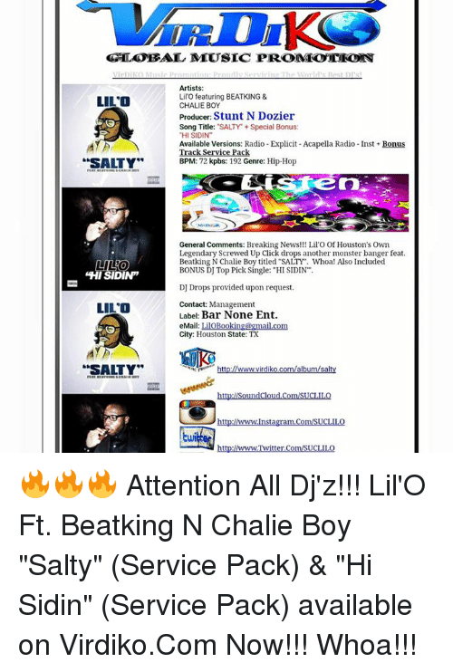 GLOBAL MLUSIC PROMEOTEO Artists Lilo Featuring BEATKING & LILO