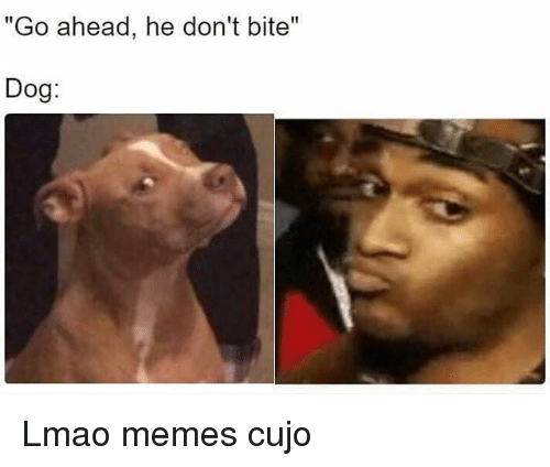go ahead he dont bite dog lmao memes cujo 19119343 go ahead he don't bite dog lmao memes cujo lmao meme on me me