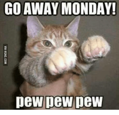Memes, 🤖, and Pew Pew: GO AWAY MONDAY!  peW pew pew