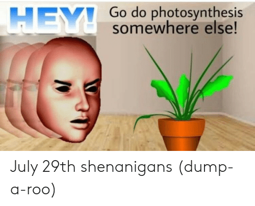 Shenanigans, Photosynthesis, and July: Go do photosynthesis  somewhere else!  HEY July 29th shenanigans (dump-a-roo)
