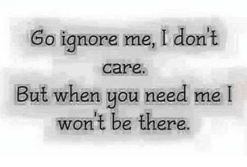 Go Ignore Me I Don't Care but When You Need Me I Wont Be