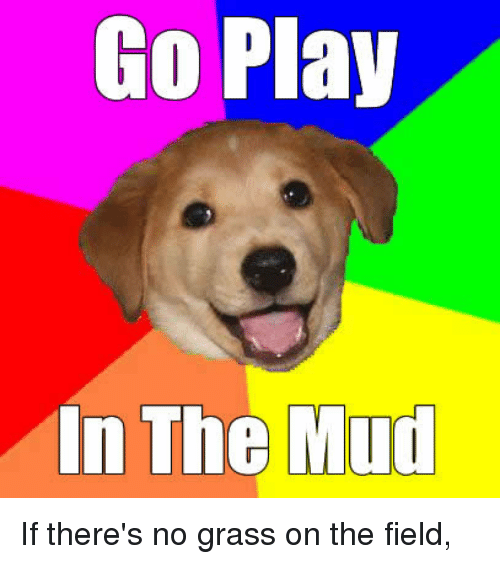 Advice Dog, Played, and Playful: Go Play  In The Mud If there's no grass on the field,