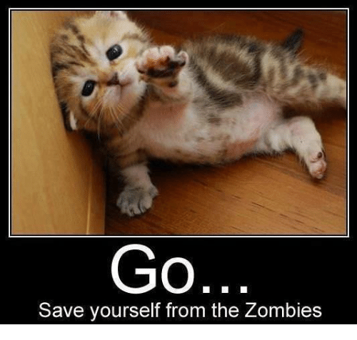 [Image: go-save-yourself-from-the-zombies-29322034.png]