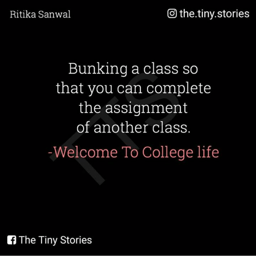 welcome to college life College, more than any other experience in a young person's life, helps to determine what kind of person he or she will be in the future to help the upcoming student, jonathan morrow provides this engaging guide packed with advice on all manner of issues.