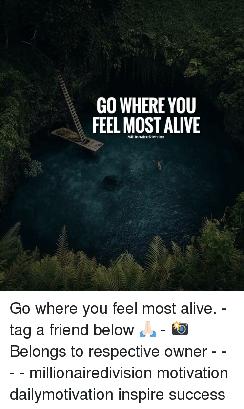 Alive, Memes, and Success: GO WHERE YOU  FEEL MOST ALIVE  MillionaireDivision Go where you feel most alive. - tag a friend below 🙏🏻 - 📸 Belongs to respective owner - - - - millionairedivision motivation dailymotivation inspire success