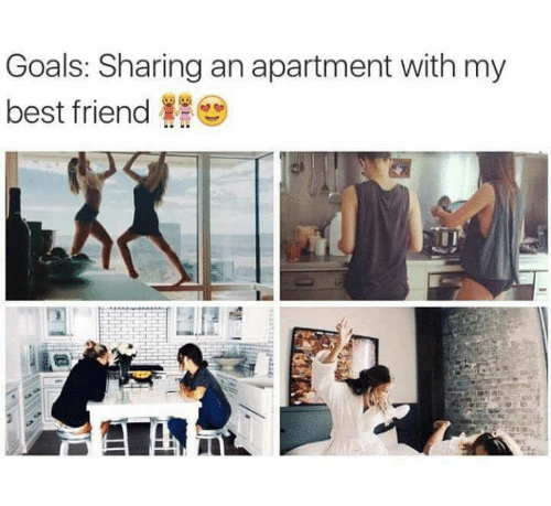 Best Friend, Goals, and Memes: Goals: Sharing an apartment with my  best friend