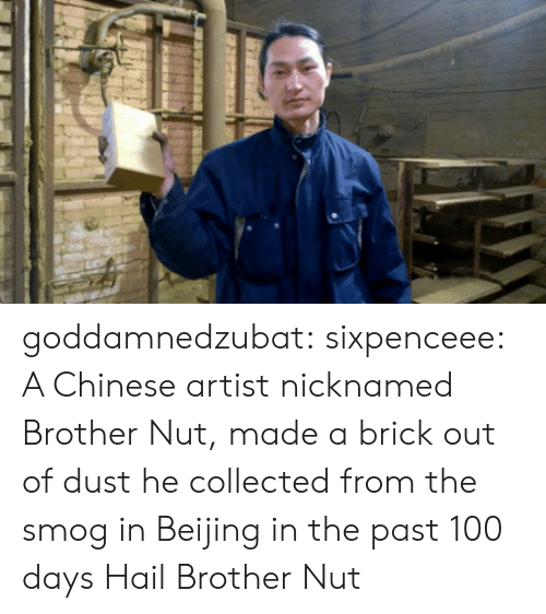 Anaconda, Beijing, and Tumblr: goddamnedzubat: sixpenceee:  A Chinese artist nicknamed Brother Nut, made a brick out of dust he collected from the smog in Beijing in the past 100 days  Hail Brother Nut