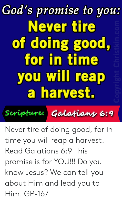 Jesus, Memes, and Good: God's promise to you  Never tire  of doing good,  for in time  you will reap  a harvest.  Seripture Galatians 6: Never tire of doing good, for in time you will reap a harvest. Read Galatians 6:9 This promise is for YOU!!! Do you know Jesus? We can tell you about Him and lead you to Him. GP-167