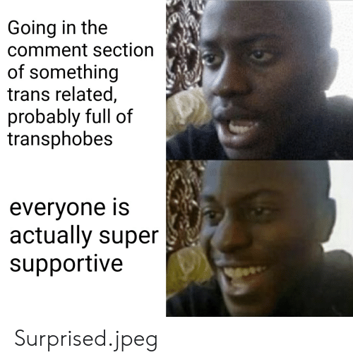 Super, Jpeg, and Comment: Going in the  comment section  of something  trans related,  probably full of  transphobes  evervone Is  actually super  supportive Surprised.jpeg