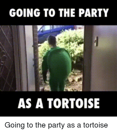Party, Tortoise, and  the Party: GOING TO THE PARTY  AS A TORTOISE Going to the party as a tortoise