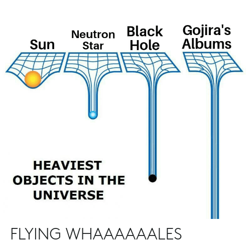 Black, Star, and Metal: Gojira's  Albums  Neutron Black  Sun  Hole  Star  HEAVIEST  OBJECTS IN THE  UNIVERSE FLYING WHAAAAAALES