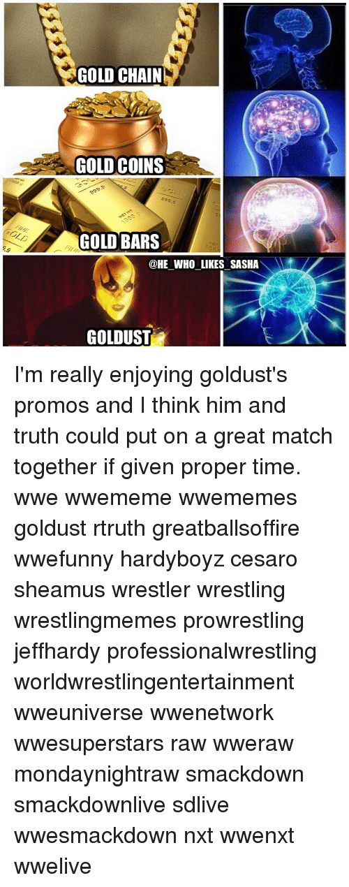 Memes, Wrestling, and World Wrestling Entertainment: GOLD CHAIN  GOLD COINS  GOLD BARS  @HE WHO LIKES SASHA  GOLDUST I'm really enjoying goldust's promos and I think him and truth could put on a great match together if given proper time. wwe wwememe wwememes goldust rtruth greatballsoffire wwefunny hardyboyz cesaro sheamus wrestler wrestling wrestlingmemes prowrestling jeffhardy professionalwrestling worldwrestlingentertainment wweuniverse wwenetwork wwesuperstars raw wweraw mondaynightraw smackdown smackdownlive sdlive wwesmackdown nxt wwenxt wwelive