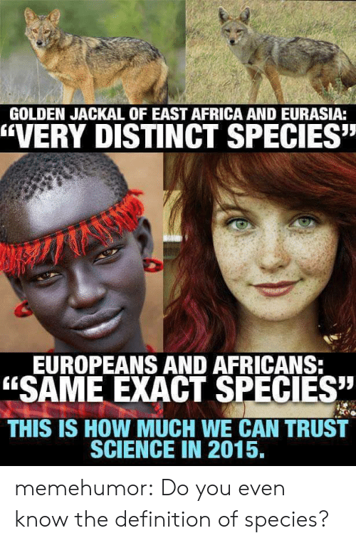 """Africa, Tumblr, and Blog: GOLDEN JACKAL OF EAST AFRICA AND EURASIA:  """"VERY DISTINCT SPECIES""""  EUROPEANS AND AFRICANS  """"SAME EXACT SPECIES  THIS IS HOW MUCH WE CAN TRUST  SCIENCE IN 2015, memehumor:  Do you even know the definition of species?"""